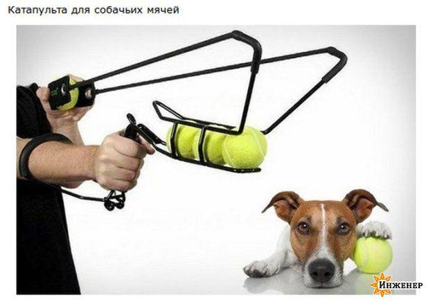 7438_e2pjpuozig.jpg гаджет, девайс, картинки, it, модный (35.19 Kb)